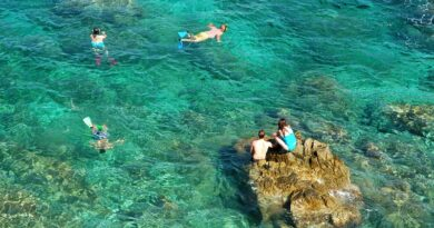Tauchurlaub auf Elba
